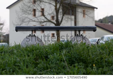 Deserted bench in an overgrown park in spring Stock photo © Giulio_Fornasar