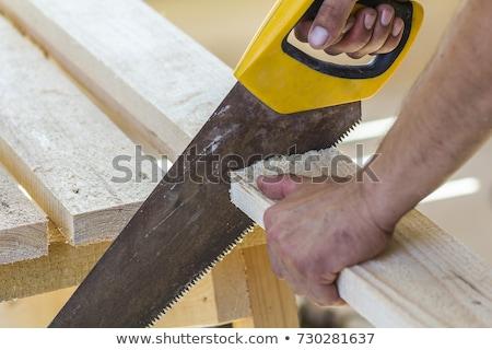 Timmerman werknemer zag Stockfoto © olira