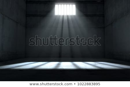 Jailed stock photo © leeser