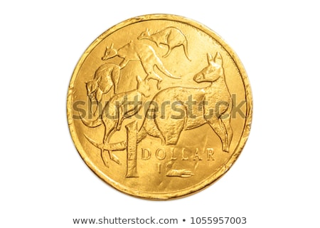 Gold $1 Coins Stock photo © Balefire9
