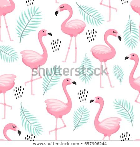 Сток-фото: Flamingo Pattern