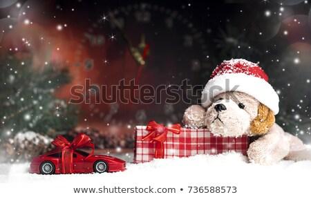 Karácsony játékok kutyák arany táska kutya Stock fotó © luapvision
