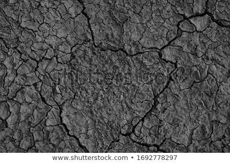 Ambiental dano rio água natureza Foto stock © simazoran