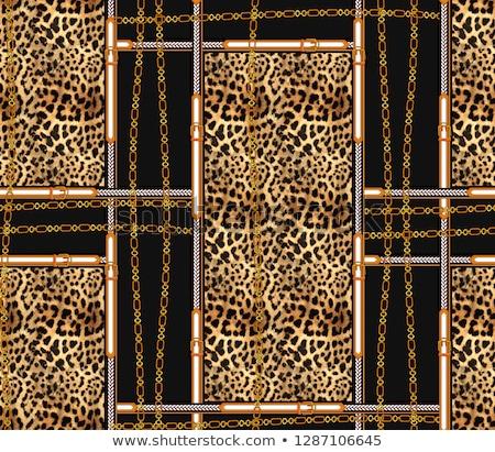 cinturón · leopardo · patrón · aislado · blanco · impresión - foto stock © RuslanOmega