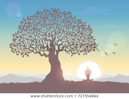 Amazing Sunrise Landscape with Tree Stock photo © WaD