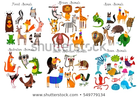 Stock photo: The big set of the different forest animals