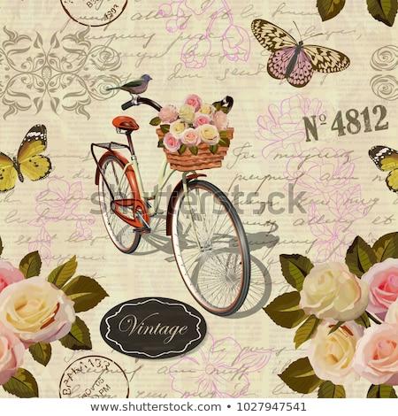 Oude fiets vogels vector vintage bladeren Stockfoto © beaubelle