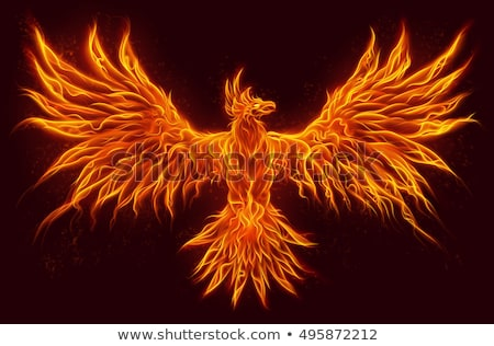phoenix bird stock photo © dagadu