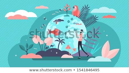 milieu · ramp · stad · tonen · effect · klimaatverandering - stockfoto © erickn