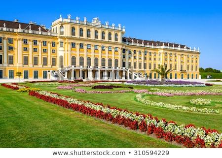 palota · Bécs · Ausztria · virág · utazás · kastély - stock fotó © bertl123