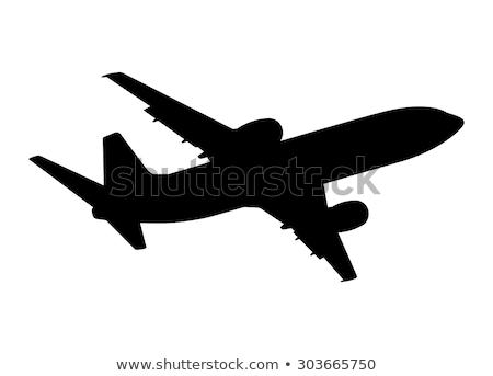 vliegtuigen · silhouetten · groep · alle · verschillend · zwart · en · wit - stockfoto © koqcreative