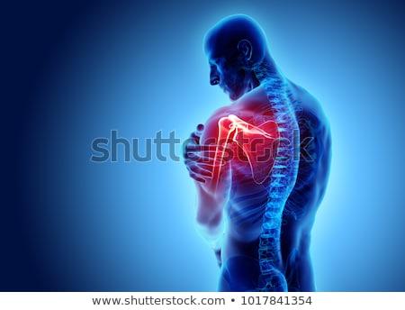 Dor no ombro esqueleto azul músculo digital dor Foto stock © wavebreak_media