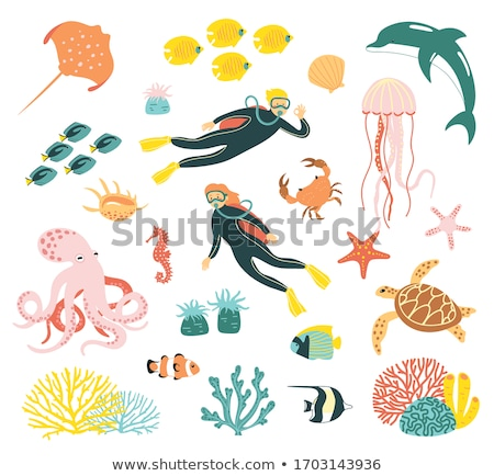 corals reefs, vector set Stock photo © beaubelle