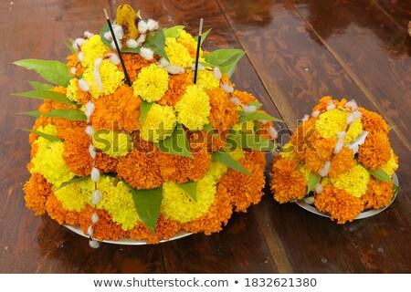 Colorful flower for worship Stock photo © leungchopan