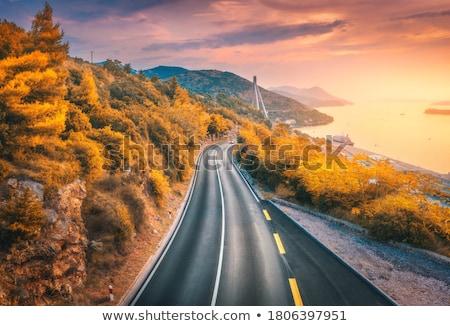 mediterráneo · forestales · panorama · pino · panorámica · vista - foto stock © kirill_m