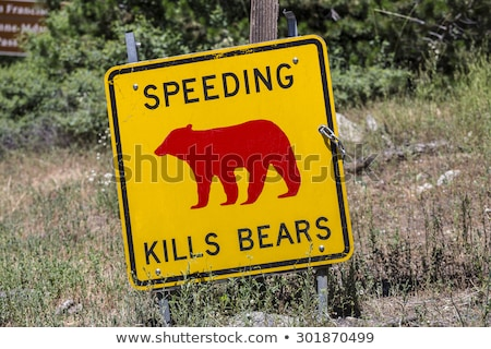 Danger sign, Speeding kills Bears in Yosemite National Park Stock photo © meinzahn