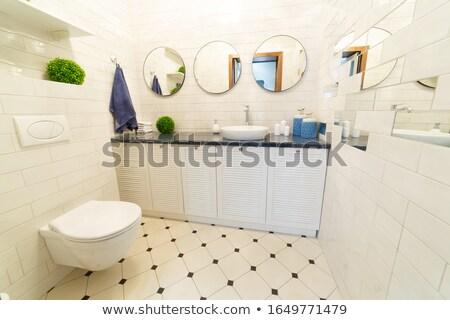 Wall mounted toilet Stock photo © Hofmeester
