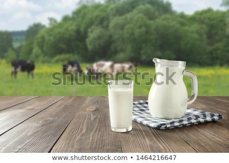 vaca · grama · prado · vintage · natureza · fazenda - foto stock © sweetcrisis
