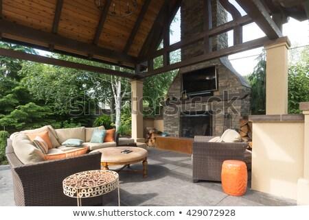 haard · patio · groen · gras · exemplaar · ruimte · gras - stockfoto © kimmit