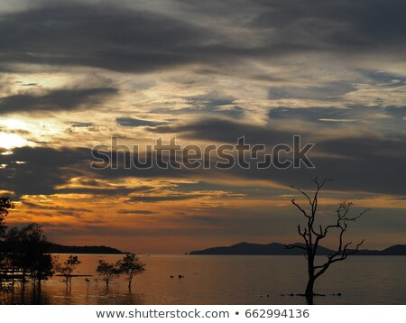 Stock photo: Mountains in evening and cloudy sky