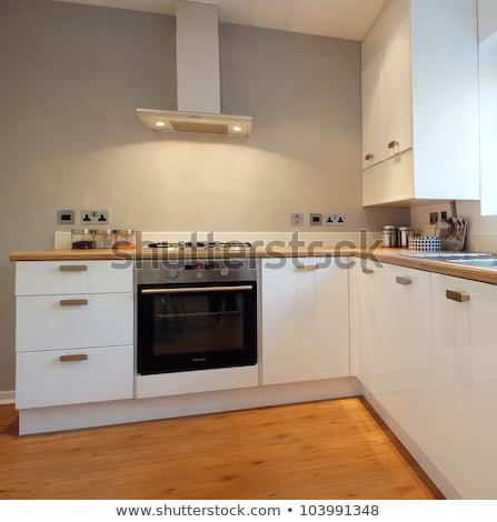 Cuisine nouvellement construire maison up vente Photo stock © JFJacobsz