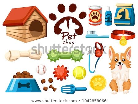 Set for pet store, symbols, icons  Stock photo © elenapro