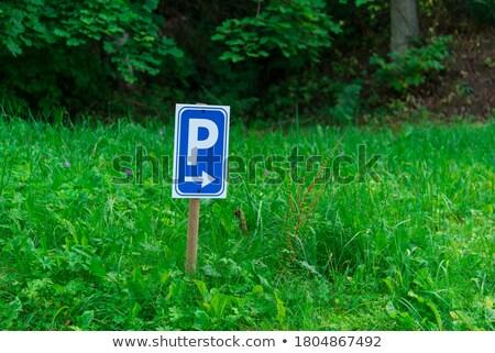 flea on warning road sign stock photo © tashatuvango