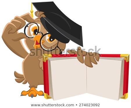 lezing · uil · illustratie · boek · vogel · studie - stockfoto © orensila