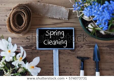 Nettoyage de printemps jardin homme clôture rouille mains Photo stock © EFischen