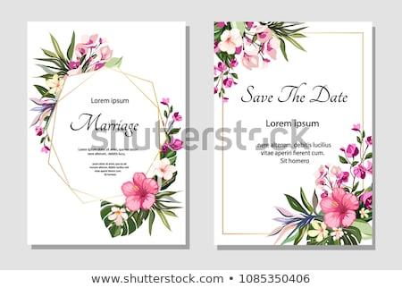 Esküvői meghívó kép illusztráció virágok szatén keret Stock fotó © Irisangel