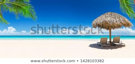 商业照片: 热带海滩 · 视图 ·二· 沙滩椅 · 太阳 · 雨伞
