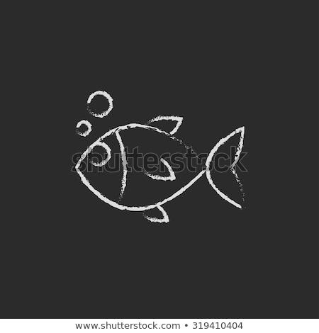 Flippers icon drawn in chalk. Stock photo © RAStudio