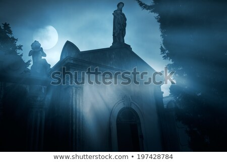 Donkere engel kerkhof mistig nacht volle maan Stockfoto © ankarb