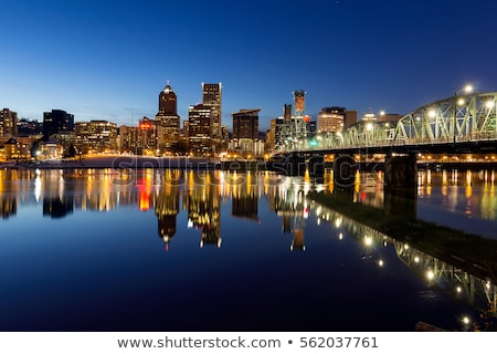 Oregon · sziluett · folyó · éjszaka · épületek · híd - stock fotó © Rigucci