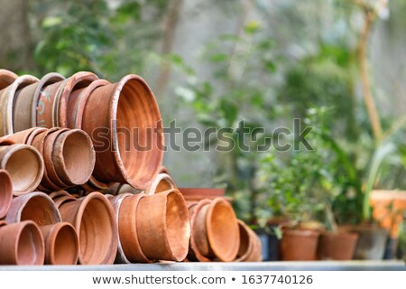 rustic vintage stacks of terracotta flower pots Stock photo © Klinker