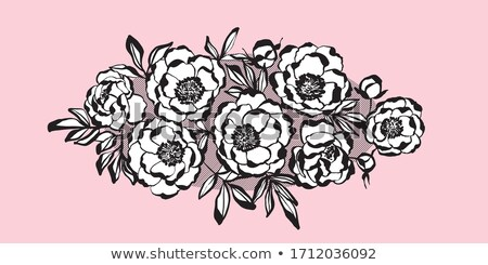 pale color tender rose floral invitation card vector illustratio Stock photo © Galyna