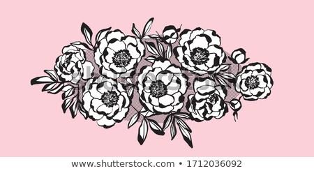 rosa · brilho · vetor · valentine - foto stock © galyna