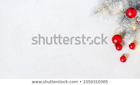 Tél fagyos fenyő ágak copy space természet Stock fotó © vlad_star