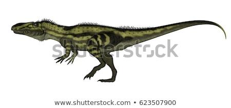 Сток-фото: Динозавры · ходьбе · 3d · визуализации · изолированный · белый · фон