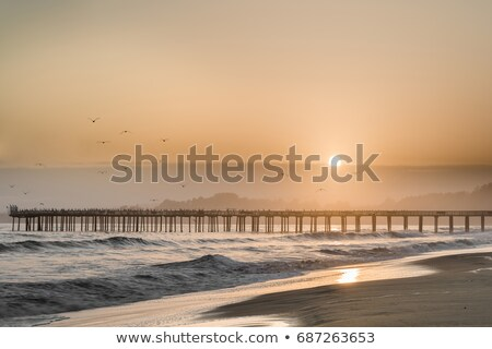 Zdjęcia stock: Birds Fly Into The Sunset Skies Of Seacliff State Beach