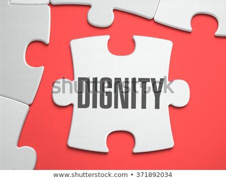 Dignidade quebra-cabeça lugar desaparecido peças texto Foto stock © tashatuvango