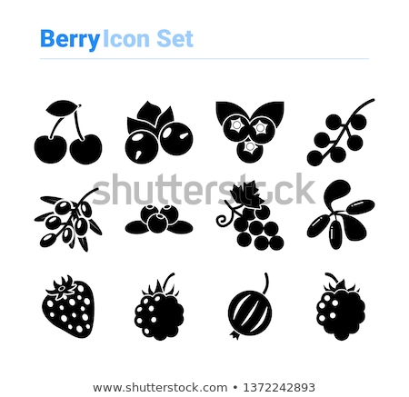 blueberry symbol black berry logo food sign stock photo © popaukropa