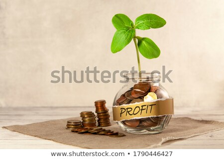 Euro bank loans for agricultural projects Stock photo © stevanovicigor