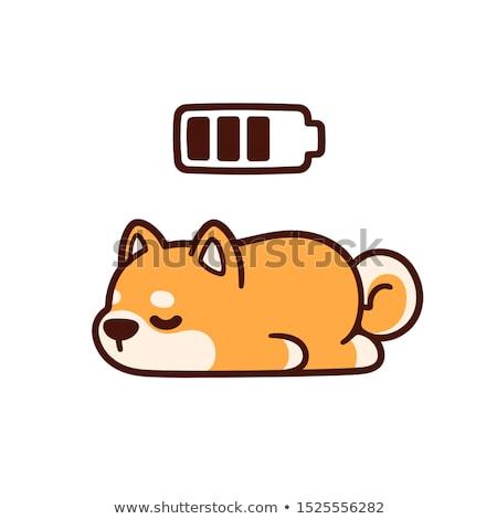 Perro dormir aislado mascota fondo Foto stock © MaryValery
