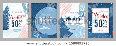 Set of winter discount elements Stock photo © orson