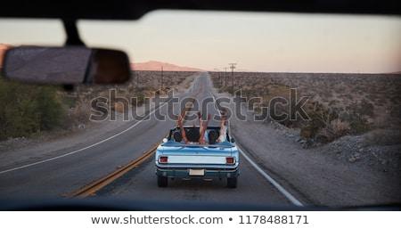 Road Trip Through the Desert  Stock photo © bluering