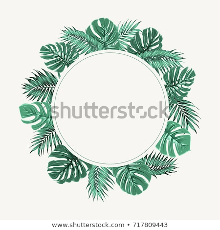 Tropical leave round banner Stock photo © PurpleBird