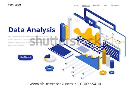 Stockfoto: Isometrische · groot · gegevens · analyse · landing · pagina