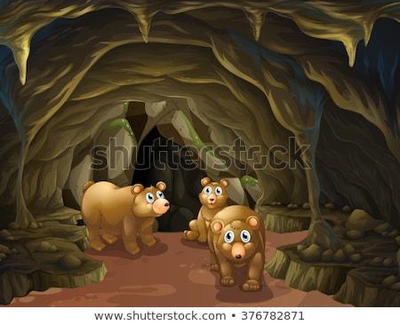 grot · illustratie · bos · natuur · landschap - stockfoto © bluering