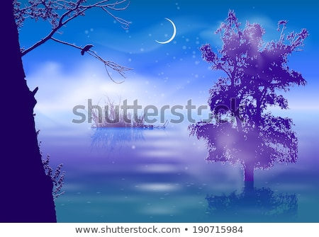 Blue mystery forest, vector trees Stock photo © beaubelle